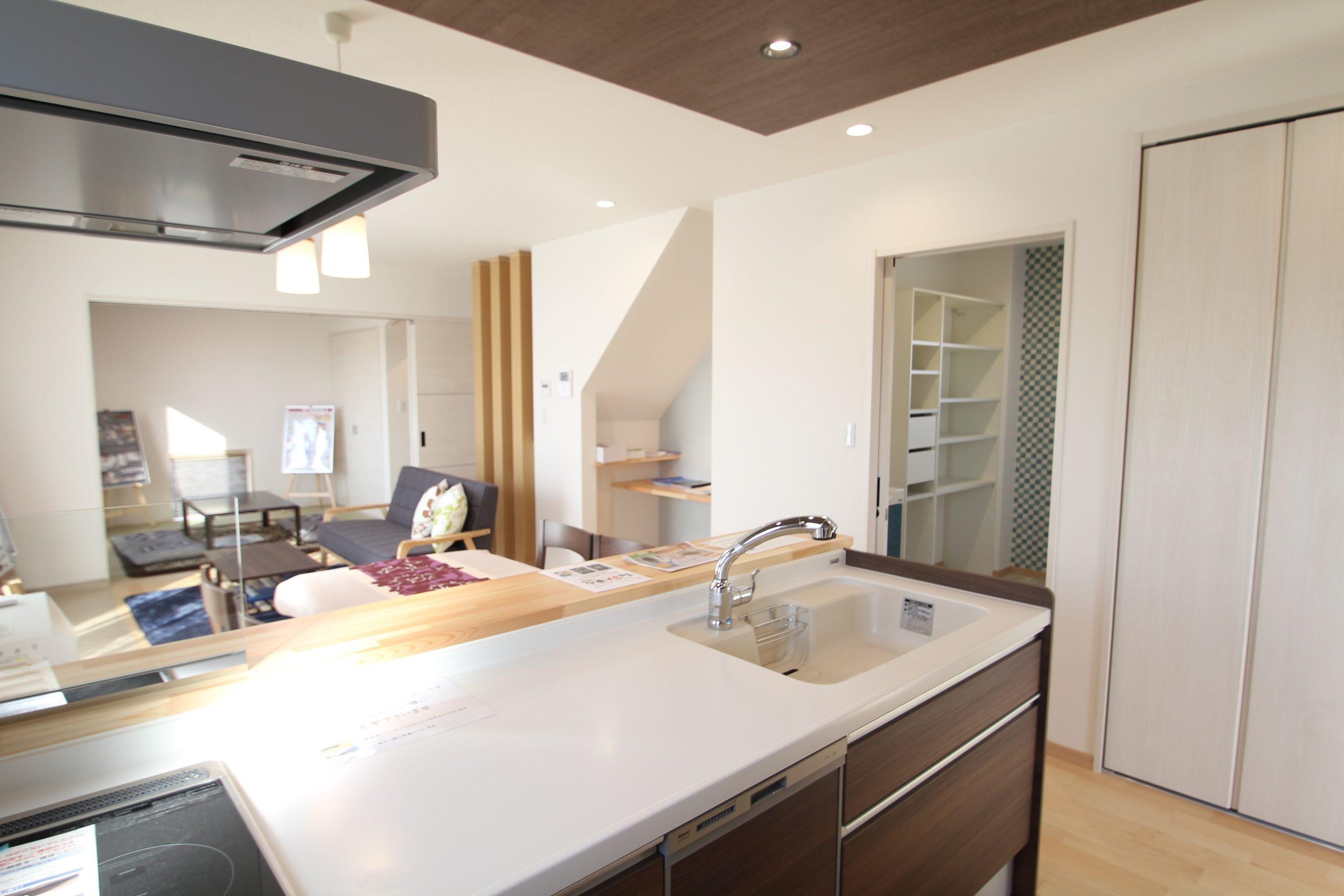 キッチン:すぐ横に洗面脱衣室があり衣類の洗濯をしながら料理を作れます。